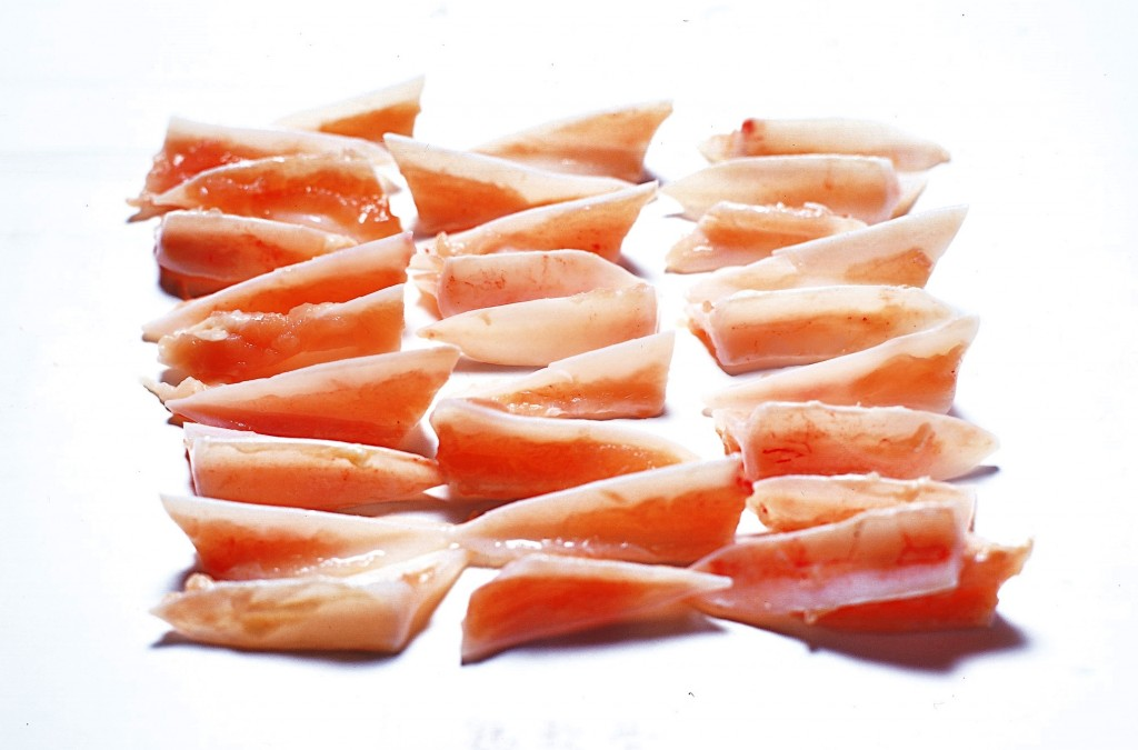 鶏肉(軟骨)の画像