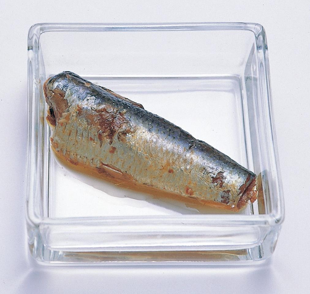 イワシ味付け缶詰の画像