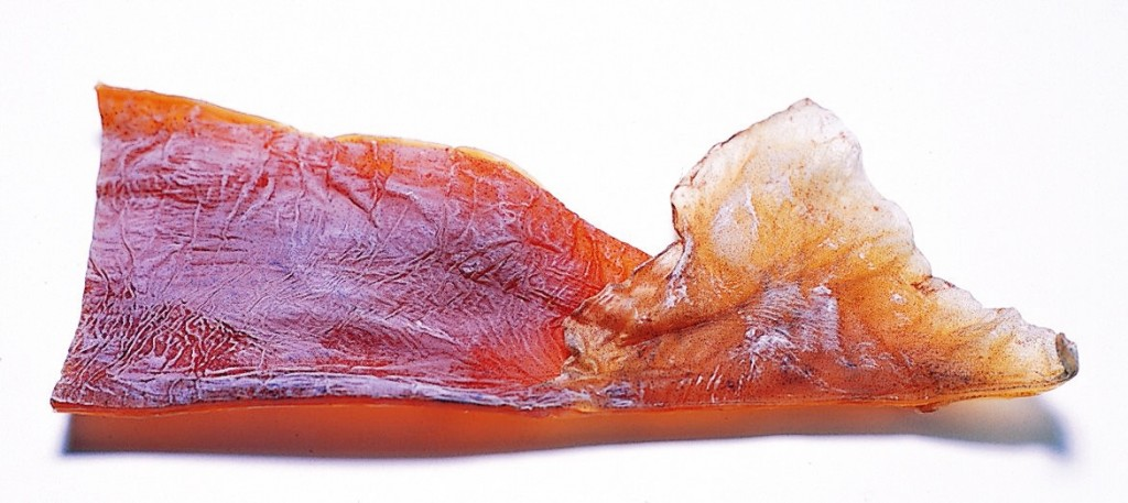 スルメの画像