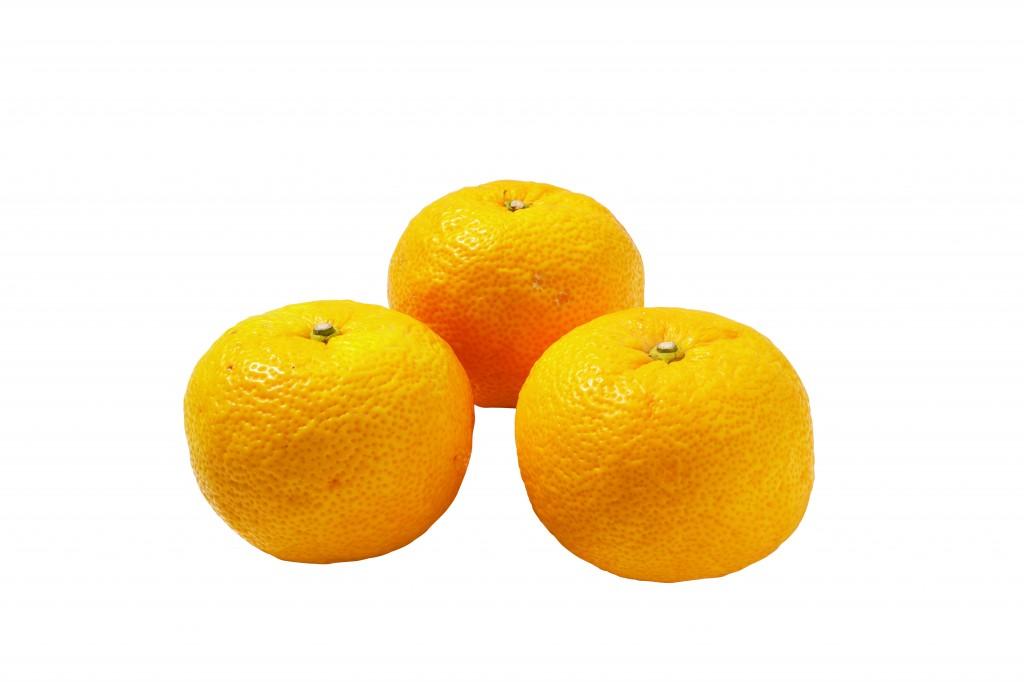 ゆず(果汁)の画像